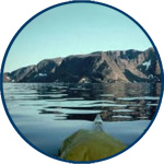 link to information about Baffin Island expedition 1981